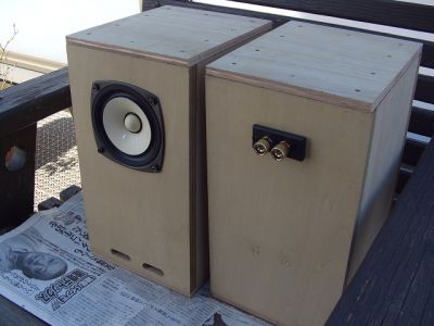 Bookshelf Sized Spiral Horn With Fostex Fe103e Driver Diy Audio