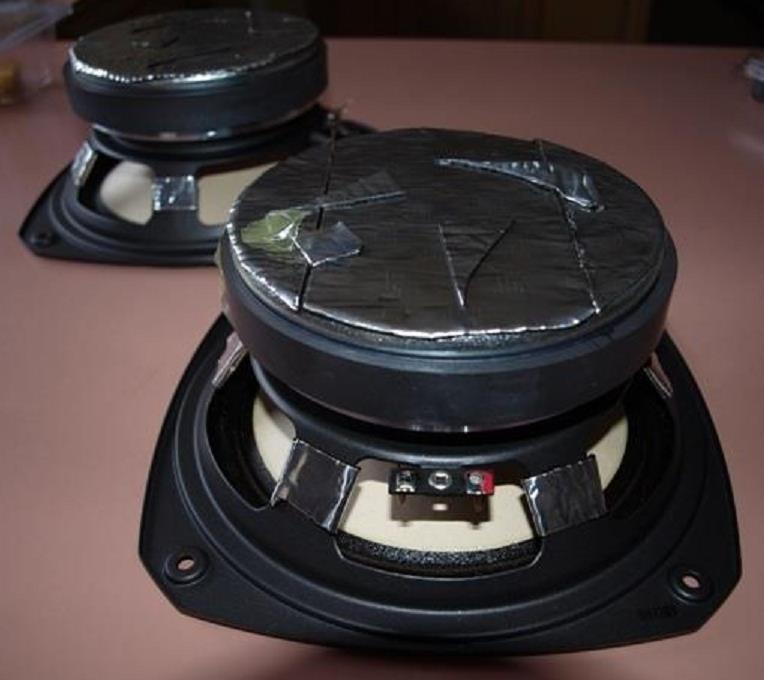 Frame Damping Fostex FE206En Fullrange Speaker Drivers